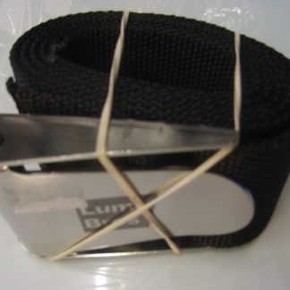 Weight belt with stainless steel buckle